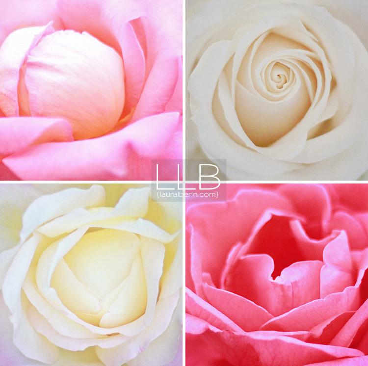 floral-art-LLB-Creative-750